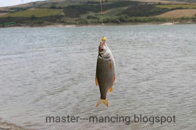 Hal yang harus di ketahui pemancing pemula