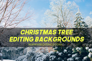 Kreditings - Christmas Tree Background