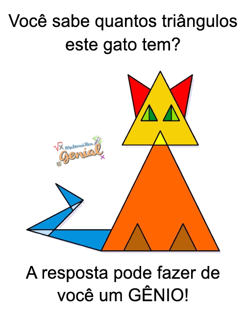 Você sabe quantos triângulos este gato tem?