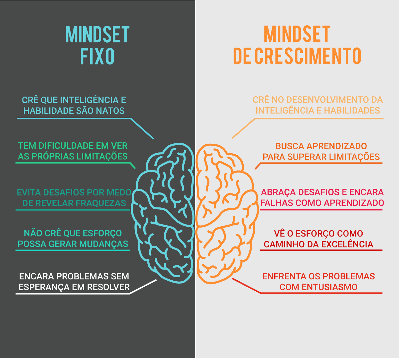 Mental Model/Mindset: Definition and Examples