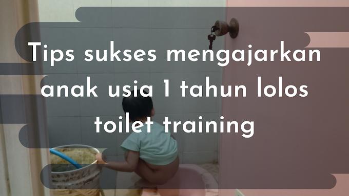 Tips Sukses Mengajarkan Anak Usia 1 Tahun Lolos Toilet Training