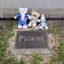 В столиці ліквідують кладовище домашніх тварин - сайт Голосіївського району