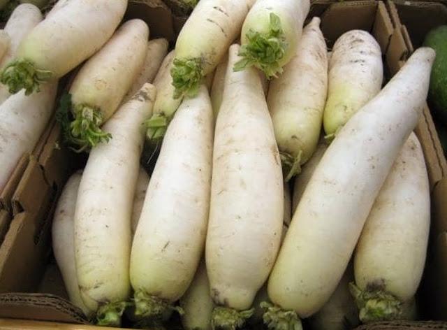 बवासीर में मूली खाएं