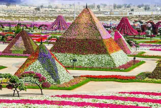 Dubai Miracle Garden: Ο κήπος με τα 45 εκατομμύρια λουλούδια (εικόνες)