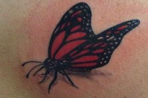 tatuaje fluturi, tatuaje fluturasi,