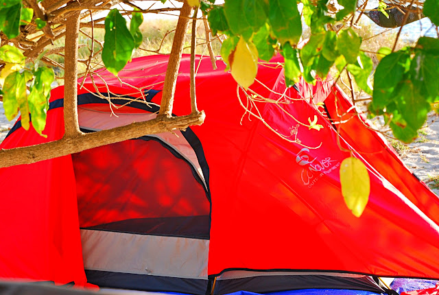 pitch a tent at Apo Reef