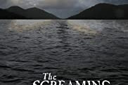 Download & Streaming Movies The Screaming Silent (2020)