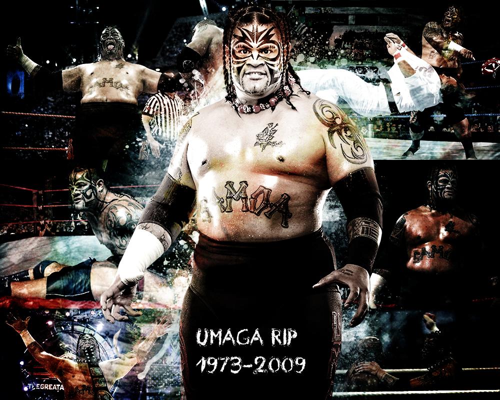Batista Hd Wallpapers 2014 Umaga Wallpapers Beautiful Umaga Picture Superstar