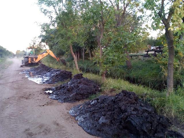 Limpieza de canales en Francisco Madero