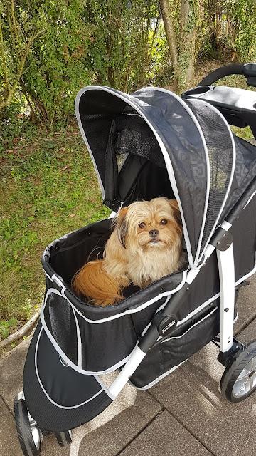Bronco in Nürtingen im InnoPet Monaco Hundewagen
