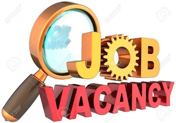 VACANCY: Web Developer Needed At Cellulant Nigeria Ltd, Abuja