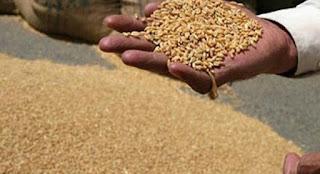 40 हजार किसानो के पंजीयन का सत्यापन