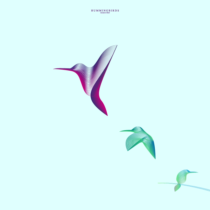 16-Humming-Birds-Andrea-Minini-Minimalist-and-Highly-Stylized-Drawings-www-designstack-co