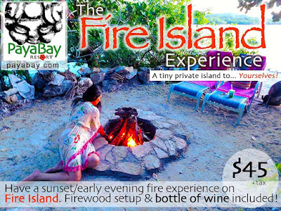 fire island, fire island experience, activity, fun, spirituality, sensuality, nature, sunset, adventure,