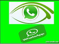Cara Mengatur WhatsApp Agar Tidak Terlihat Online