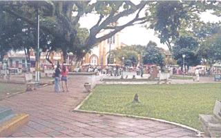 Acacias, Parque
