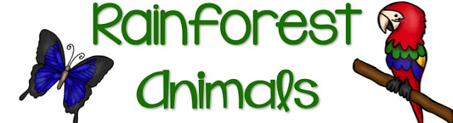 Rainforest Animals Google Site