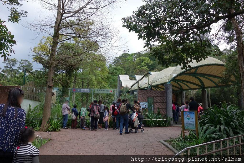 台北動物園(24).jpg