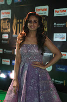 Parul Yadav in Stunning Purple Sleeveless Transparent Gown at IIFA Utsavam Awards 2017  Day 2  Exclusive 24.JPG