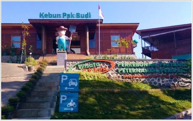 Kebun Pak Budi;10 Top Destinasi Wisata Pasuruan;
