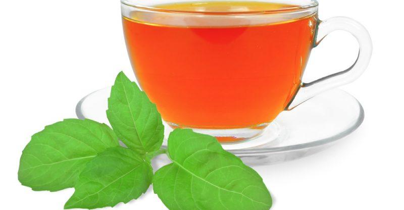 11 Benefícios do Chá de Manjericão à Saúde