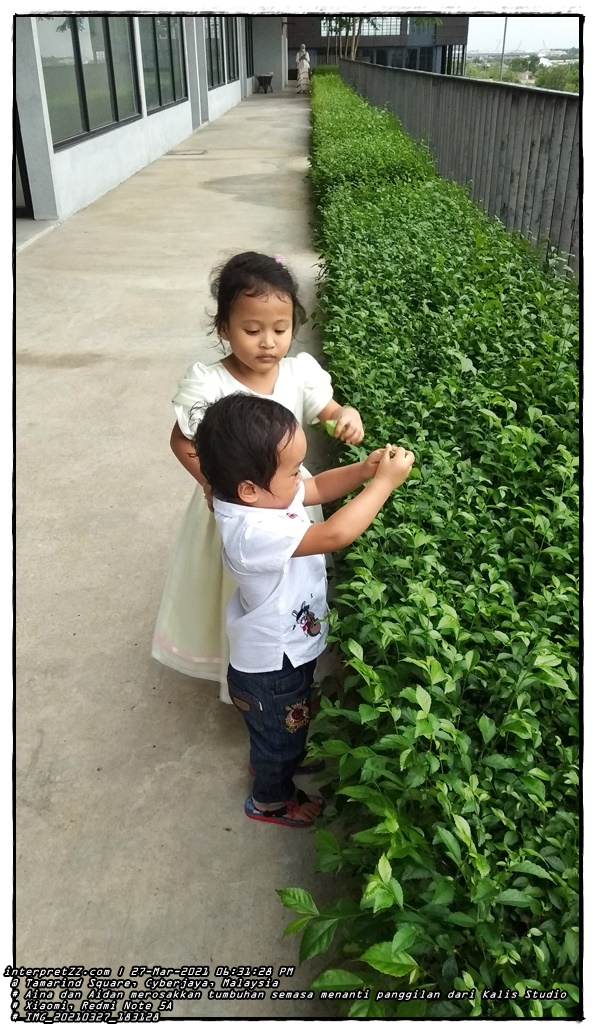 picture of Aina and Aidan busy picking leaves while waiting for a call from the Kalis Studio photographer. Maybe it was this anticipation that made Aina tired and in no mood during the filming afterwards?