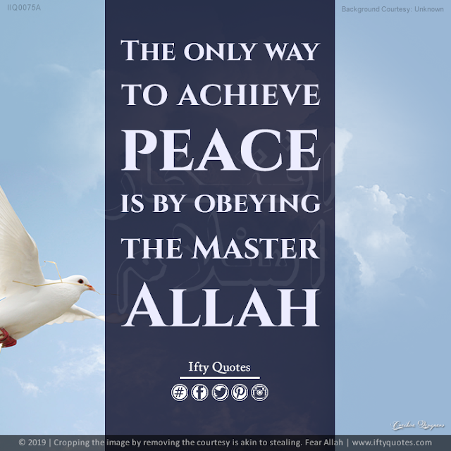 Ifty Quotes | The only way you achieve peace is by obeying the Master - Allah | Iftikhar Islam
