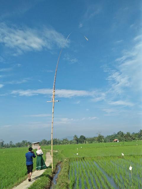 Desa Citamiang