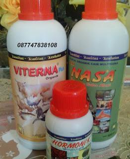 daftar harga produk nasa, harga poc nasa, harga hormonik, viterna plus nasa, pt nasa, vitamin ternak, daftar terbaru harga produk nasa
