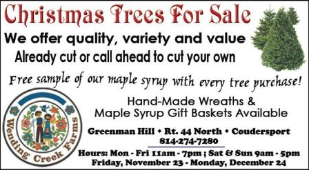 Thru 12/24 Christmas Trees For Salr