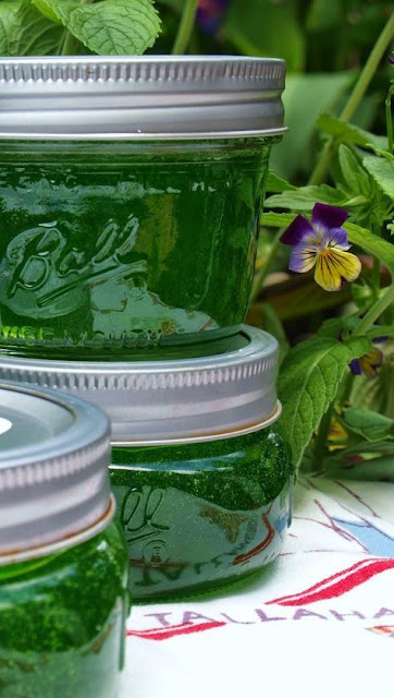 Mint Jelly Recipe | Mint Jelly