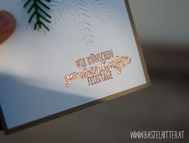 Tannenzauber Tannen und Zapfen christmas Pines pretty pines tannenzweig stampin up bastelritter
