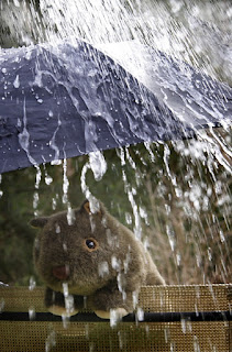Shane and Rain