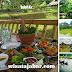 Bukit Air Resto, Menikmati Kuliner Khas Sunda di Tengah Persawahan