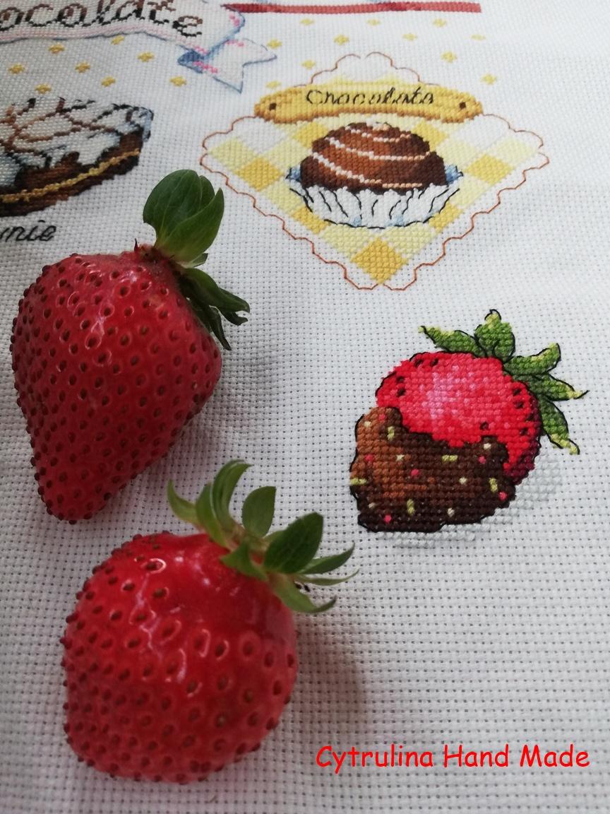 IMG 20200615 165039 - SAL Cacao cz.6