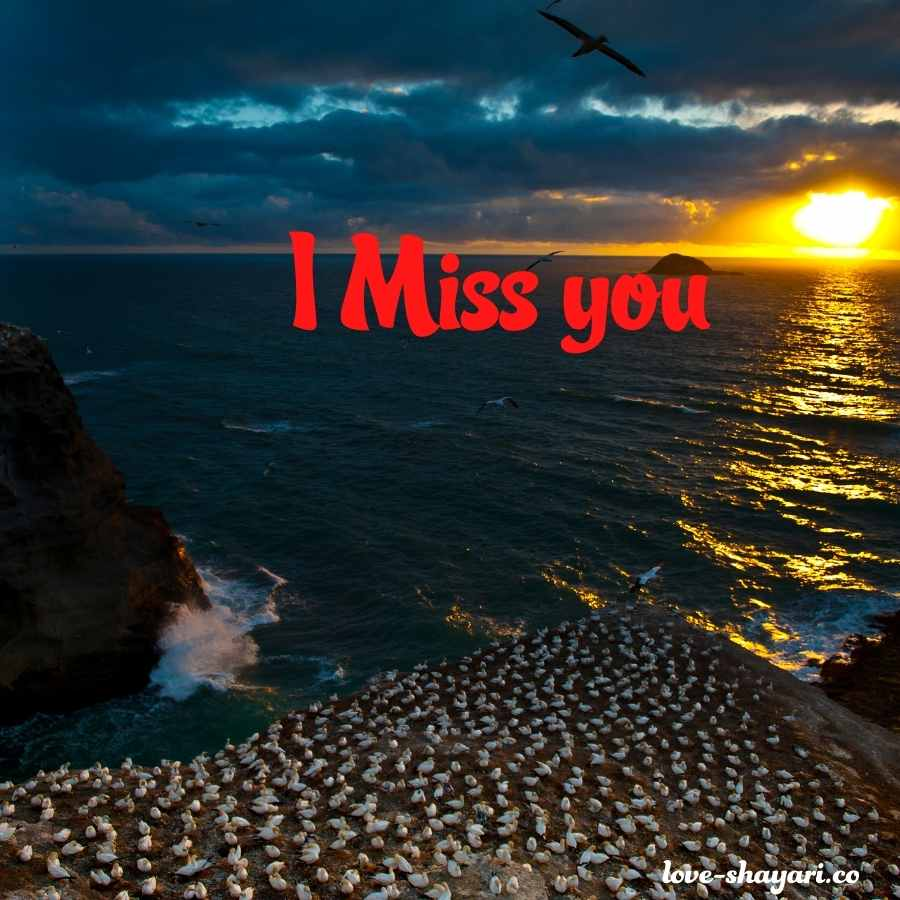i love you i miss you images