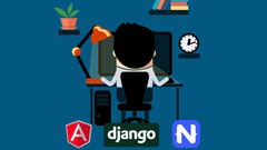 Full Stack dev - web, mobile, back-end API (Angular, Django)