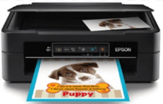Epson XP 241 Drivers Download