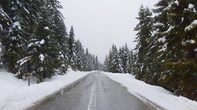 Χιόνισε στο νομό Τρικάλων