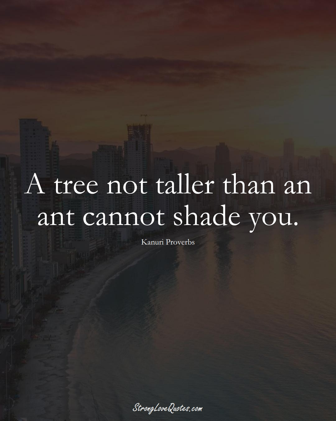 A tree not taller than an ant cannot shade you. (Kanuri Sayings);  #aVarietyofCulturesSayings