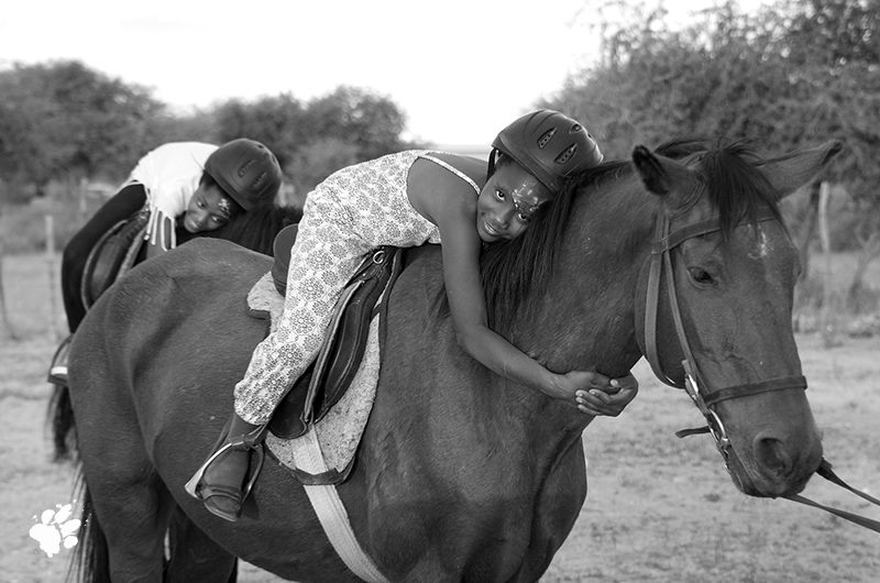 namibia, cavalli, santuario, volontariato, equitazione naturale