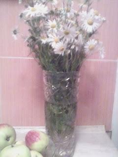 ромашки в вазе