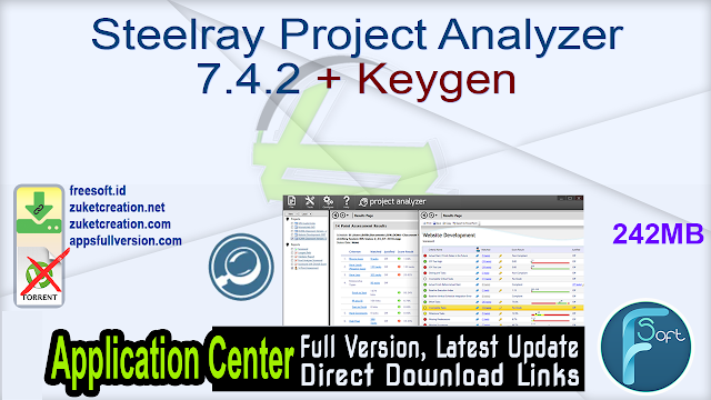 Steelray Project Analyzer 7.4.2 + Keygen