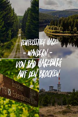 Bad Harzburger Teufelsstieg | Wanderung-Harz | Wandern – Von Bad-Harzburg auf den Brocken | Wandern-im-Harz | Abstieg Goetheweg zum Torfhaus 21