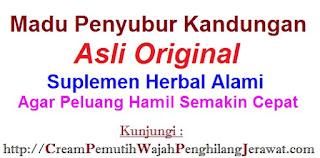 Jual Suplemen Madu Penyubur Kandungan Al Mabruroh asli ber-BPOM