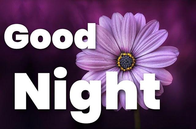 flower good night images