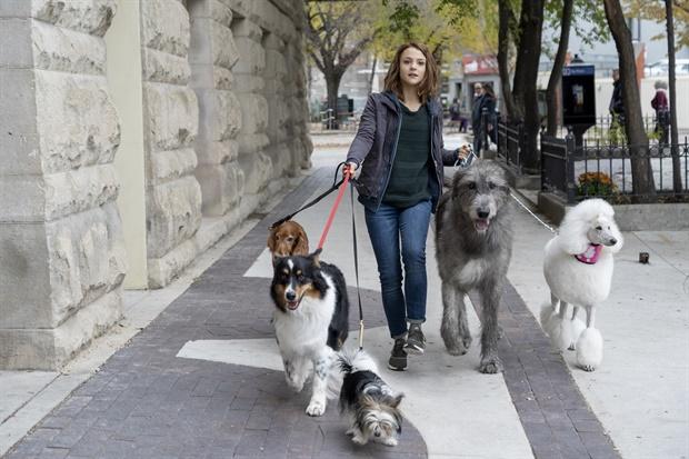 Sinopsis Film A Dog's Journey (2019) Review dan Pemain Lengkap Official