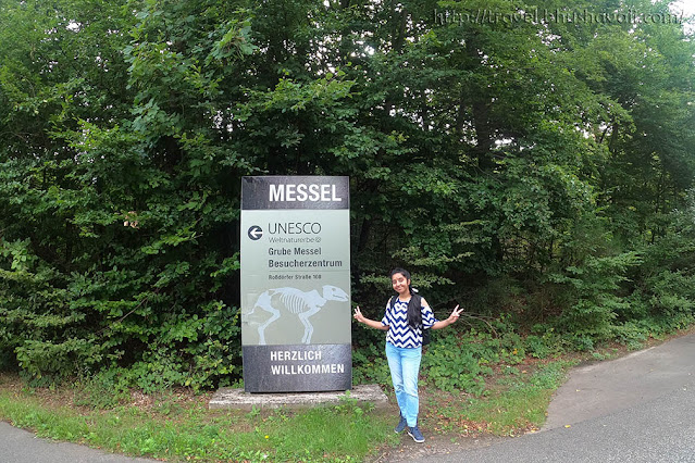 Grube Messel - UNESCO World Heritage Sites of Germany