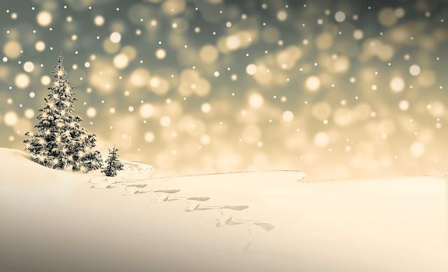 dossier d'activités, Noël, français, FLE, le FLE en un 'clic', compréhension orale, expression orale, expression écrite