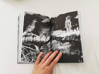 Sette minuti dopo la mezzanotte Patrick Ness Recensione libro Jim Kay illustrazioni